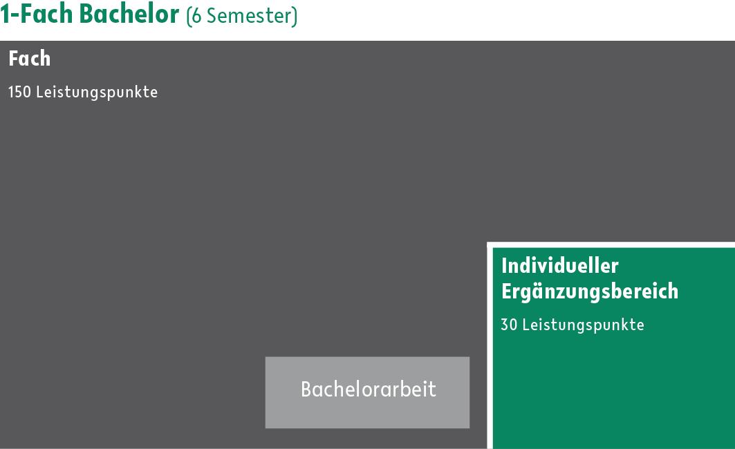 1-Fach Bachelor